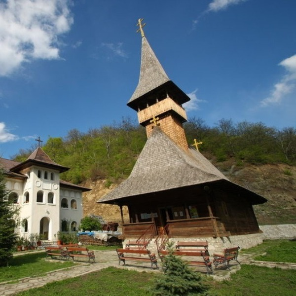 http://pensiuneadanubia.ro/wp-content/uploads/2016/02/Manastirea-Vodita-1-activitati.jpg