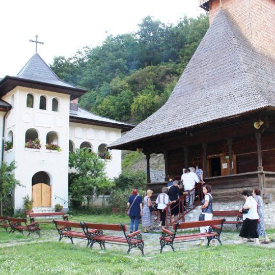 http://pensiuneadanubia.ro/wp-content/uploads/2016/03/Manastirea-Vodita-3-540x540.jpg
