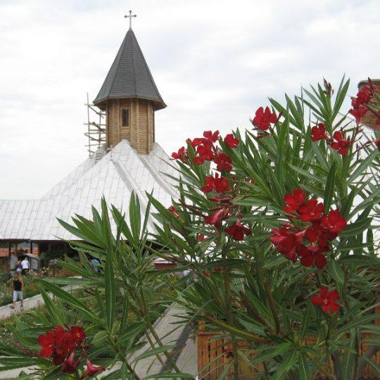 https://pensiuneadanubia.ro/wp-content/uploads/2016/03/Manastirea-Sfanta-Ana-5-540x540.jpg
